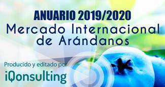 Anuario iQonsulting 2019-2020