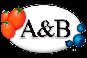 A&B PACKAGING EUROPA