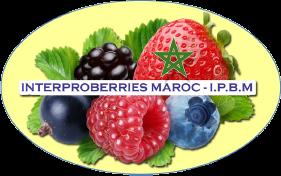 FÉDÉRATION MAROCAINE INTERPROFESSIONNELLE DES FRUITS ROUGES